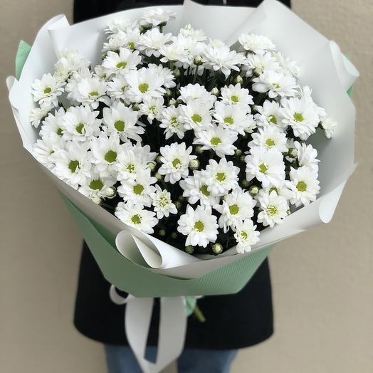 A Bouquet Of Chrysanthemum Bacardi