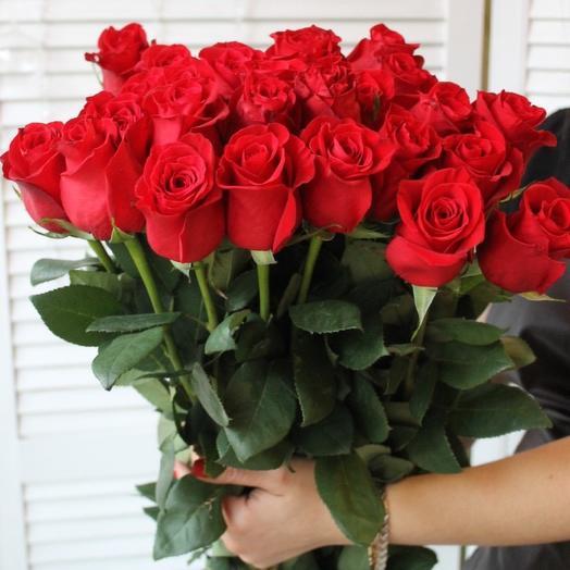 25 Метровых роз