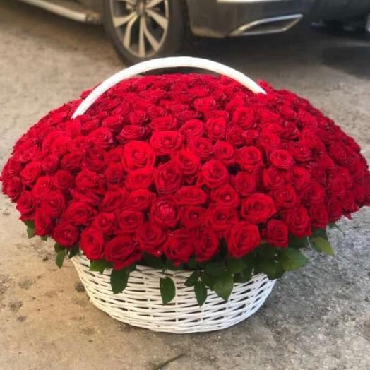 201 красная роза в белой корзине