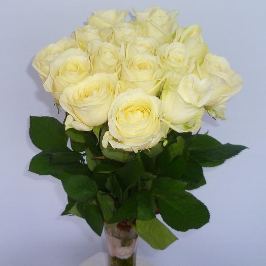 15 белых роз (страна Эквадор): букеты цветов на заказ Flowwow