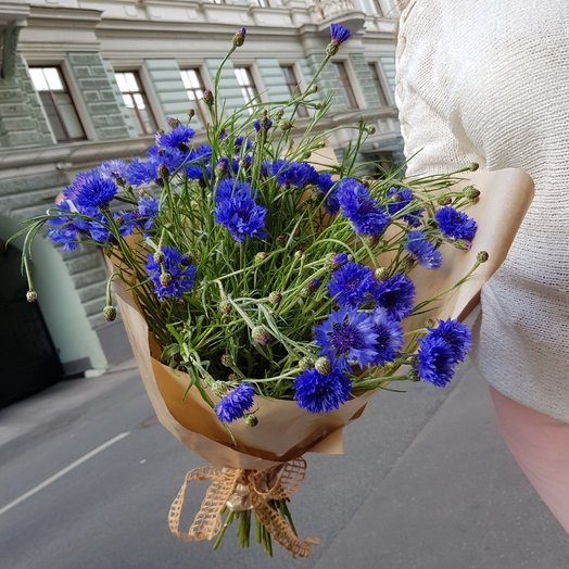 Васильки-василёчки: букеты цветов на заказ Flowwow
