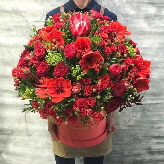 Шикарная коробка с розами,аммарилисом и протеей: букеты цветов на заказ Flowwow
