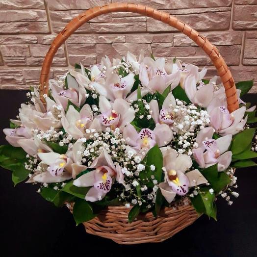 35 орхидей в корзине: букеты цветов на заказ Flowwow