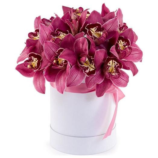 Orchid box: букеты цветов на заказ Flowwow