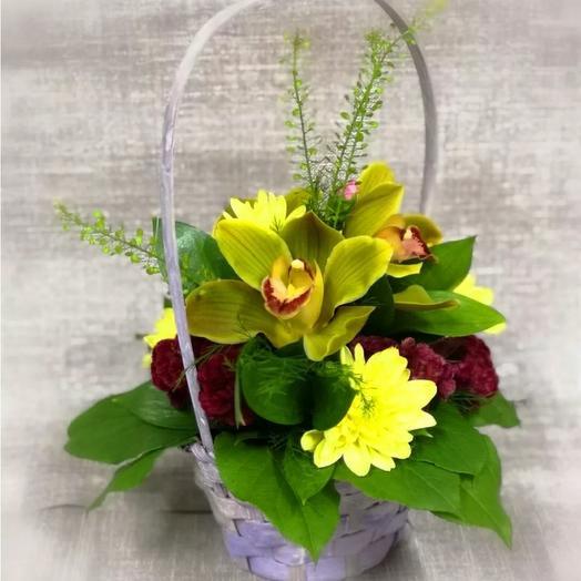 Корзинка-комплимент с орхидеями