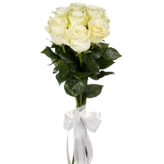 Розы 7шт