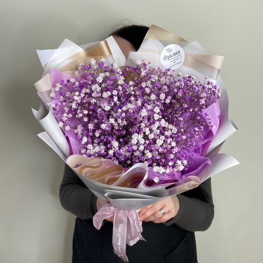 Фиолетовая гипсофила 💜