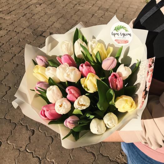 25 Тюльпанов в упаковке