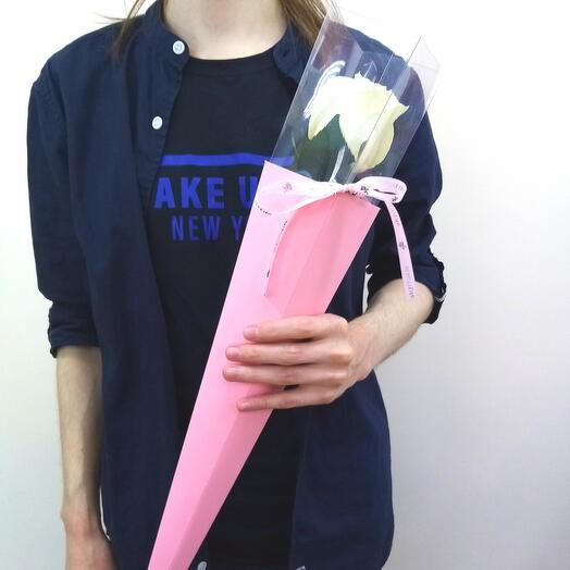 Rose in a cone