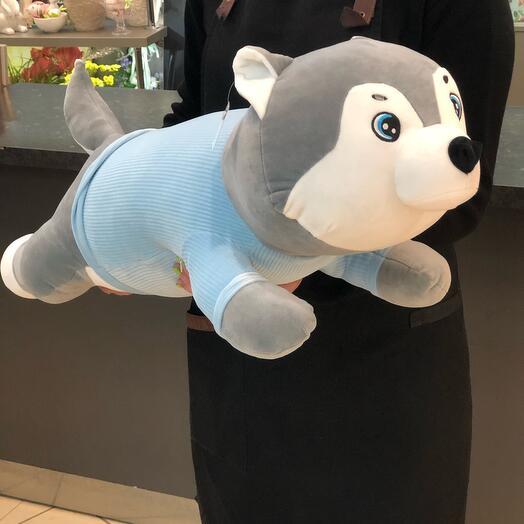 Собака Аки 80см