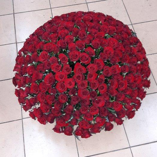 301 красная роза в корзине: букеты цветов на заказ Flowwow