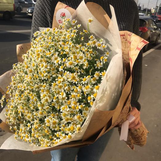 Букет из 25 веточек ромашки Камила: букеты цветов на заказ Flowwow