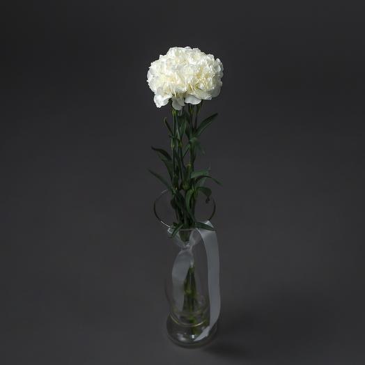 """Букет """"5 Белых Гвоздик"""": букеты цветов на заказ Flowwow"""