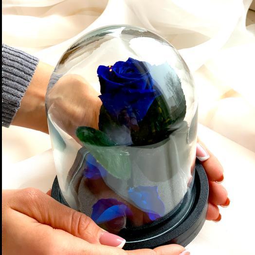 """Роза в колбе """"Дюймовочка"""" Синяя: букеты цветов на заказ Flowwow"""