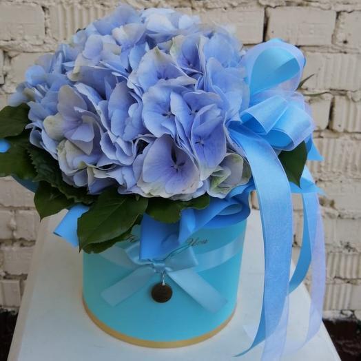 Коробка из гортензии: букеты цветов на заказ Flowwow