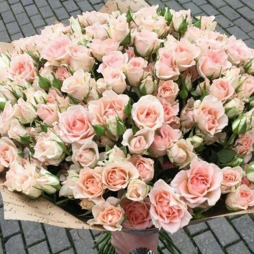 51 кустовая кремовая роза