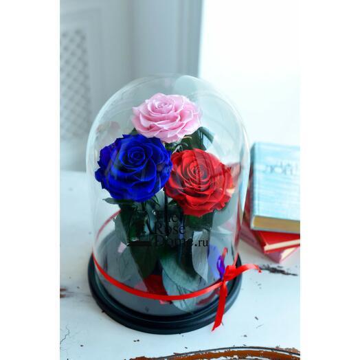 Роза в колбе Трио Кинг мультиколор 32*22*12см