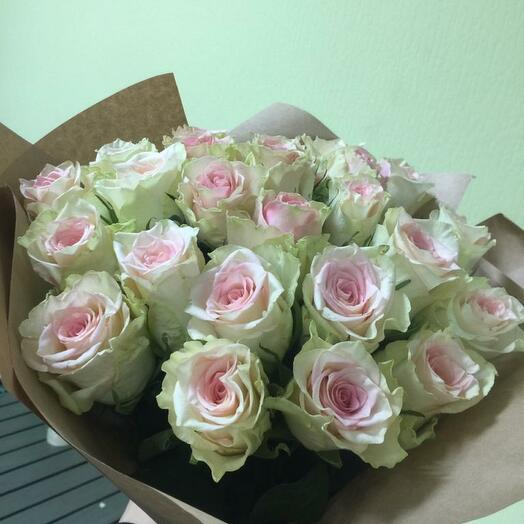 21 розово-белая роза