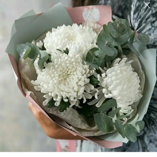 Большие хризантемы Антонов с эвкалиптом