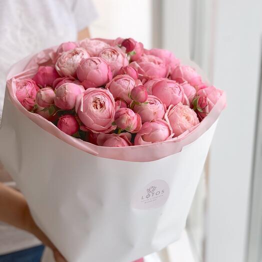 Пионовидная роза Silva pink