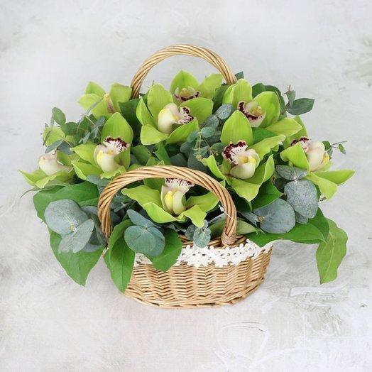 Композиция из зеленой орхидеи: букеты цветов на заказ Flowwow