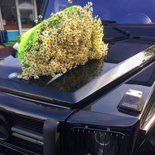 Букет Ромашковое Поле: букеты цветов на заказ Flowwow