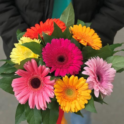 Букет из 7 гербер: букеты цветов на заказ Flowwow