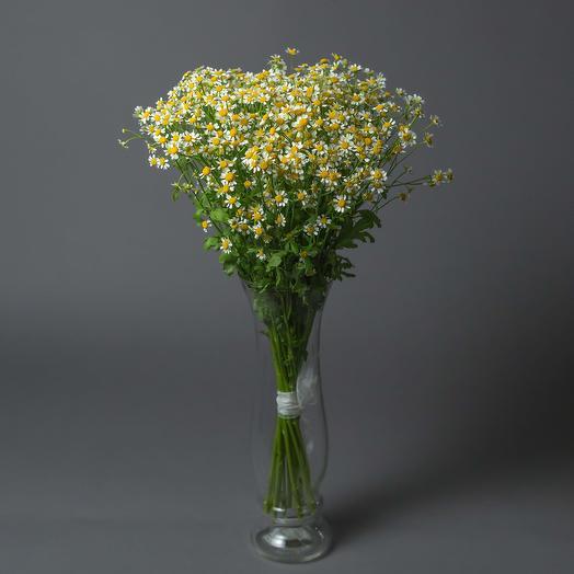 "Букет из ""15 Матрикарий"": букеты цветов на заказ Flowwow"