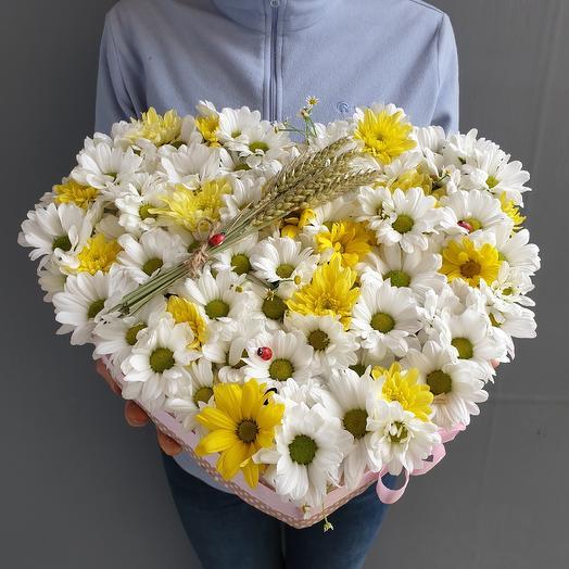 Огромное сердце с ромашковой хризантемой и пшеницой: букеты цветов на заказ Flowwow