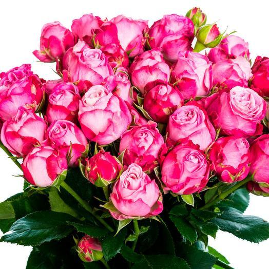 11 пионовидных роз Малина с белым: букеты цветов на заказ Flowwow