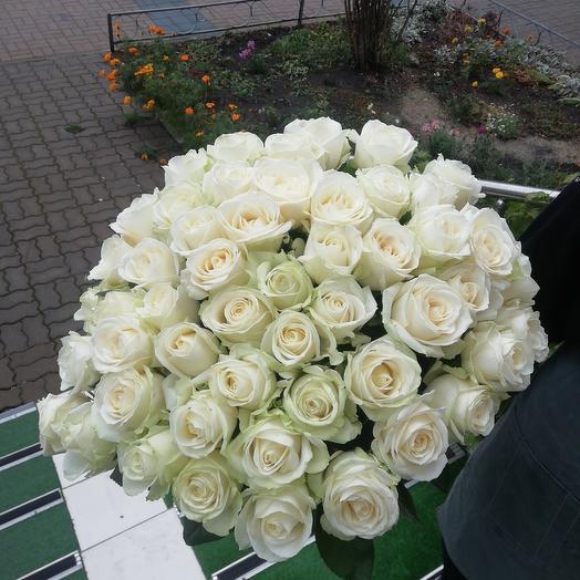 51 роза аваланж