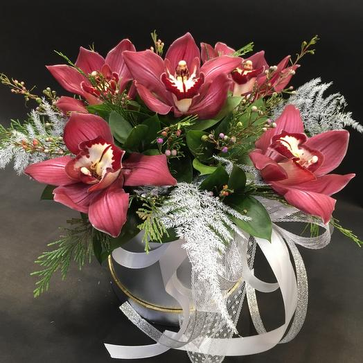 5 орхидей в коробке