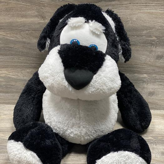Собака Спайк черно-белый