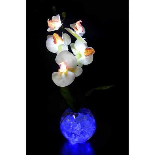 Светильник Орхидея белооранжевая(син) 5 цветков