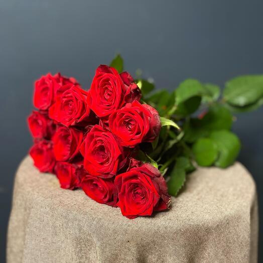 Роза 🌹11 шт