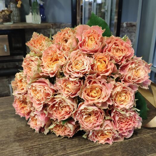 Роза Луиза 25