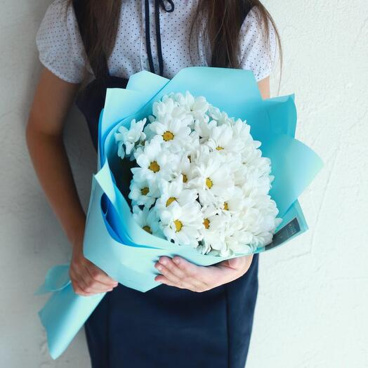 5 кустовых хризантем на 1 сентября