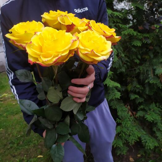 7 высоких роз