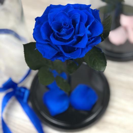 Вечная роза в колбе синяя: букеты цветов на заказ Flowwow