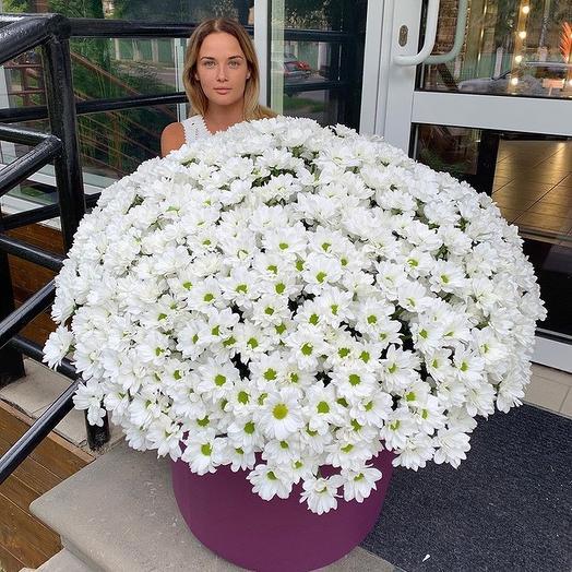 Огромнейший букет хризантем: букеты цветов на заказ Flowwow