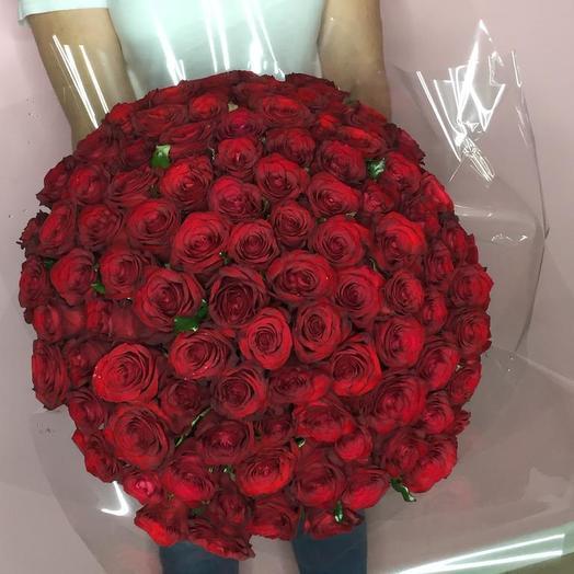 101 Бордовая Роза Престиж: букеты цветов на заказ Flowwow