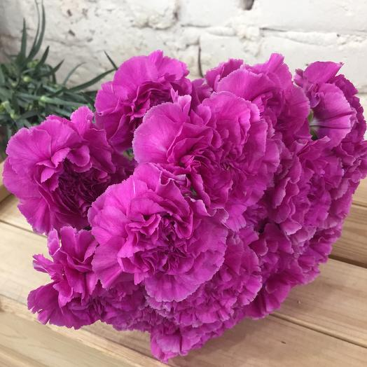Bouquet of 15 carnations