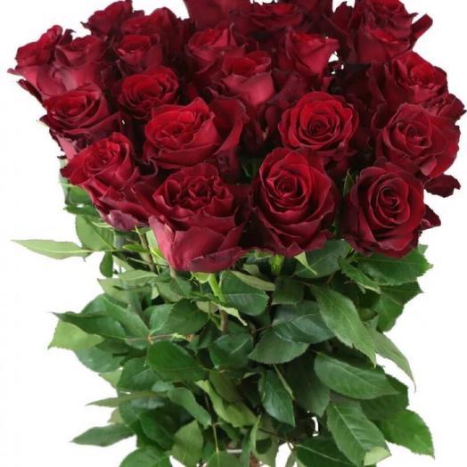 Букет из 25 бордовых роз сорта Эксплорер