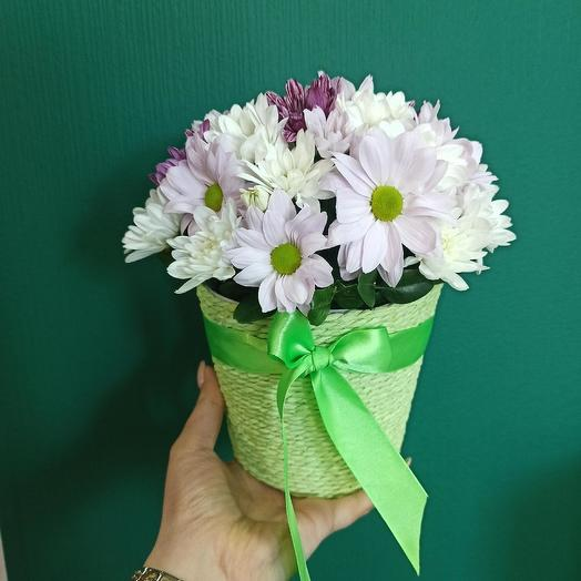 Хризантемки: букеты цветов на заказ Flowwow