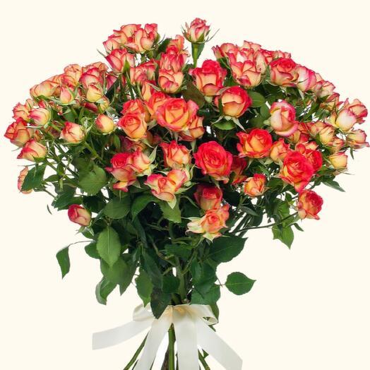 Роза кустовая zadiaq 60 см