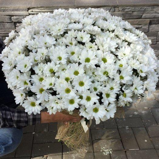 """Букет из хризантем """"Белый и пушистый"""""""
