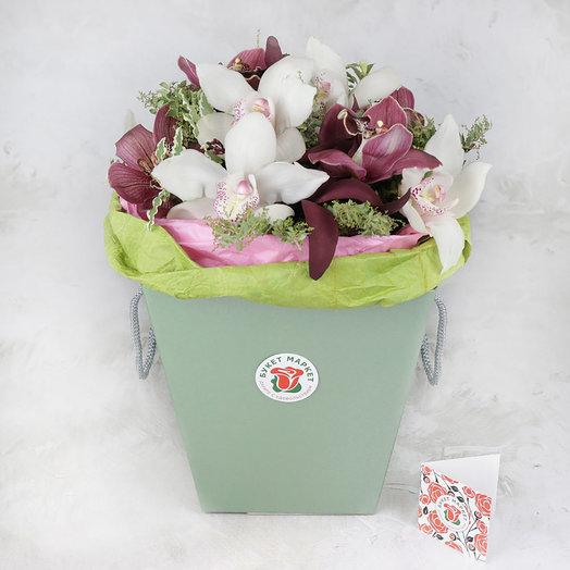 Композиция из орхидеи и мимозы в зеленой коробке
