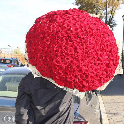 301 красная роза/ Роскошный Букет из 301 розы: букеты цветов на заказ Flowwow