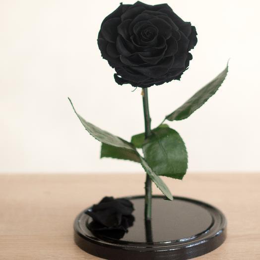 Роза в колбе Премиум черная: букеты цветов на заказ Flowwow