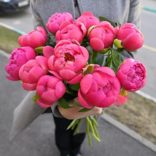 Букет из 11 коралловых пионов: букеты цветов на заказ Flowwow